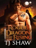 Rogue Dragon Rising, part one