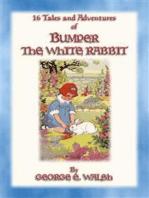 BUMPER THE WHITE RABBIT - 16 illustrated adventures of Bumper the White Rabbit