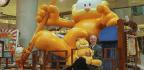 Garfield The Cartoon Cat Turns 40