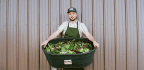 American Chef Praises Vegetables, Makes The Case For Seasonal And Local Eating In New Cookbook