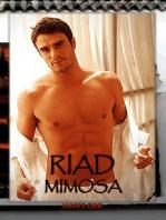 Riad Mimosa