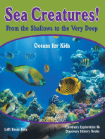 Sea Creatures! From the Shallows to the Very Deep - Oceans for Kids - Children's Exploration & Discovery History Books