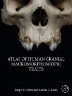 Atlas of Human Cranial Macromorphoscopic Traits