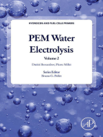 PEM Water Electrolysis