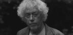 Dag Solstad on the Accidental Politics of Novel Writing