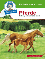 Benny Blu - Pferde