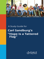 "A Study Guide for Carl Sandburg's ""Hope Is a Tattered Flag"""