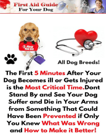 First Aid Guide for Your Dog