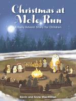 Christmas at Mole Run