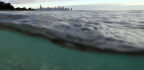 Researchers Discover 2 New Non-native Species In Great Lakes