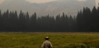 Yosemite Valley To Reopen Tuesday After Nearby Fires Closed It For 20 Days