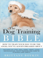 The Dog Training Bible - How to Train Your Dog to be the Angel You've Always Dreamed About