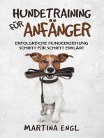 Hundetraining für Anfänger