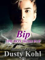 Bip, the Boy Irish Pup