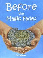 Before the Magic Fades