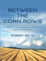 Between the Corn Rows
