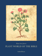 Plant World of the Bible: -