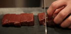 The Jordan Peterson All-Meat Diet
