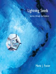 Lightning Seeds: Journey Through the Rainbow