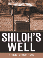 Shiloh's Well