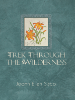 Trek Through the Wilderness