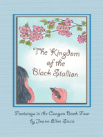 The Kingdom of the Black Stallion