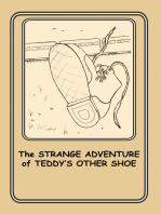 The Strange Adventure of Teddy's Other Shoe