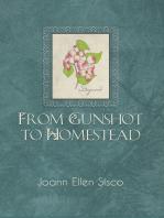 From Gunshot to Homestead