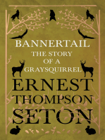 Bannertail - The Story of a Graysquirrel