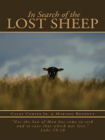 In Search of the Lost Sheep