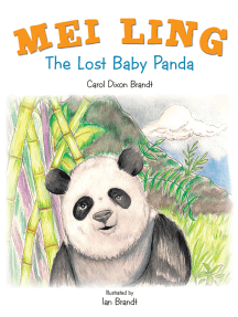 Mei Ling: The Lost Baby Panda