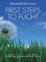 First Steps to Flight