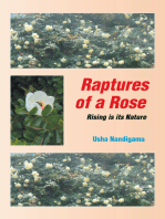 Raptures of a Rose