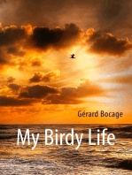 My Birdy Life