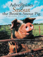 The Adventures of Snout the Brown-Snout Pig