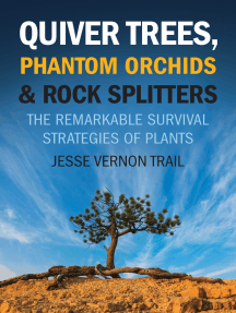 Quiver Trees, Phantom Orchids & Rock Splitters: The Remarkable Survival Strategies of Plants