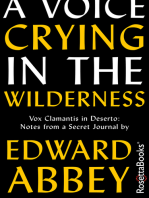 A Voice Crying in the Wilderness: Vox Clamantis in Deserto: Notes from a Secret Journal