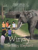 Windy the Baby Elephant