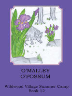O'malley O'possom