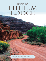 Road to Lithium Lodge