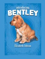 Introducing Bentley
