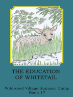 The Education of Whitetail