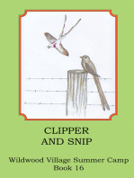 Clipper and Snip