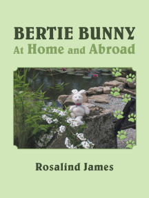 Bertie Bunny at Home and Abroad