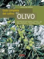 Guía completa del cultivo del olivo