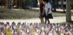 America's Deliberate Empathy in Teaching 9/11