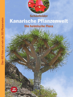 Kanarische Pflanzenwelt