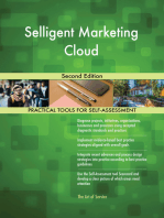 Selligent Marketing Cloud Second Edition