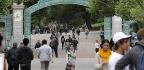 The Campus Diversity Swarm
