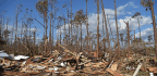 Mexico Beach, Florida, Motel Owner Surveys Damage After Hurricane Michael